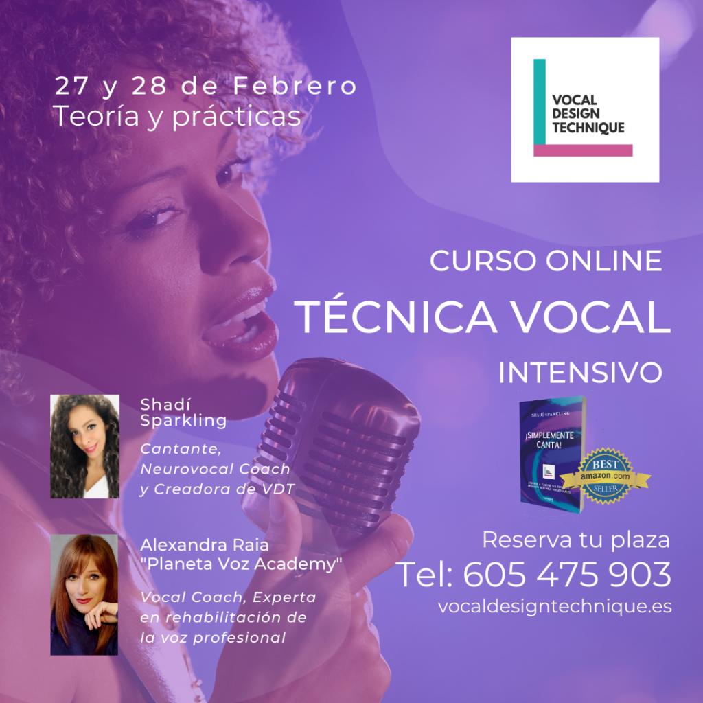 Curso intensivo de canto online